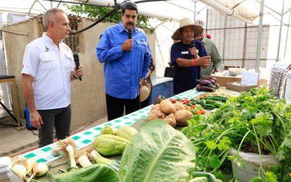 16 billones fueron aprobados por el Presidente Nicolás Maduro para el Plan Nacional AgroUrbano 2018