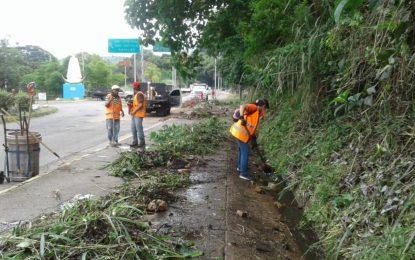 Corpoandes y Alcaldía de Cárdenas realizan mantenimiento a la Av. 1 de Táriba