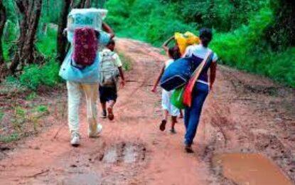 ONU reporta que más de 8.000 colombianos fueron desplazados durante mayo