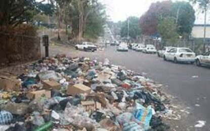 Autoridad Epidemilógica del Táchira alertó consecuencias de salud por cierre técnico del vertedero